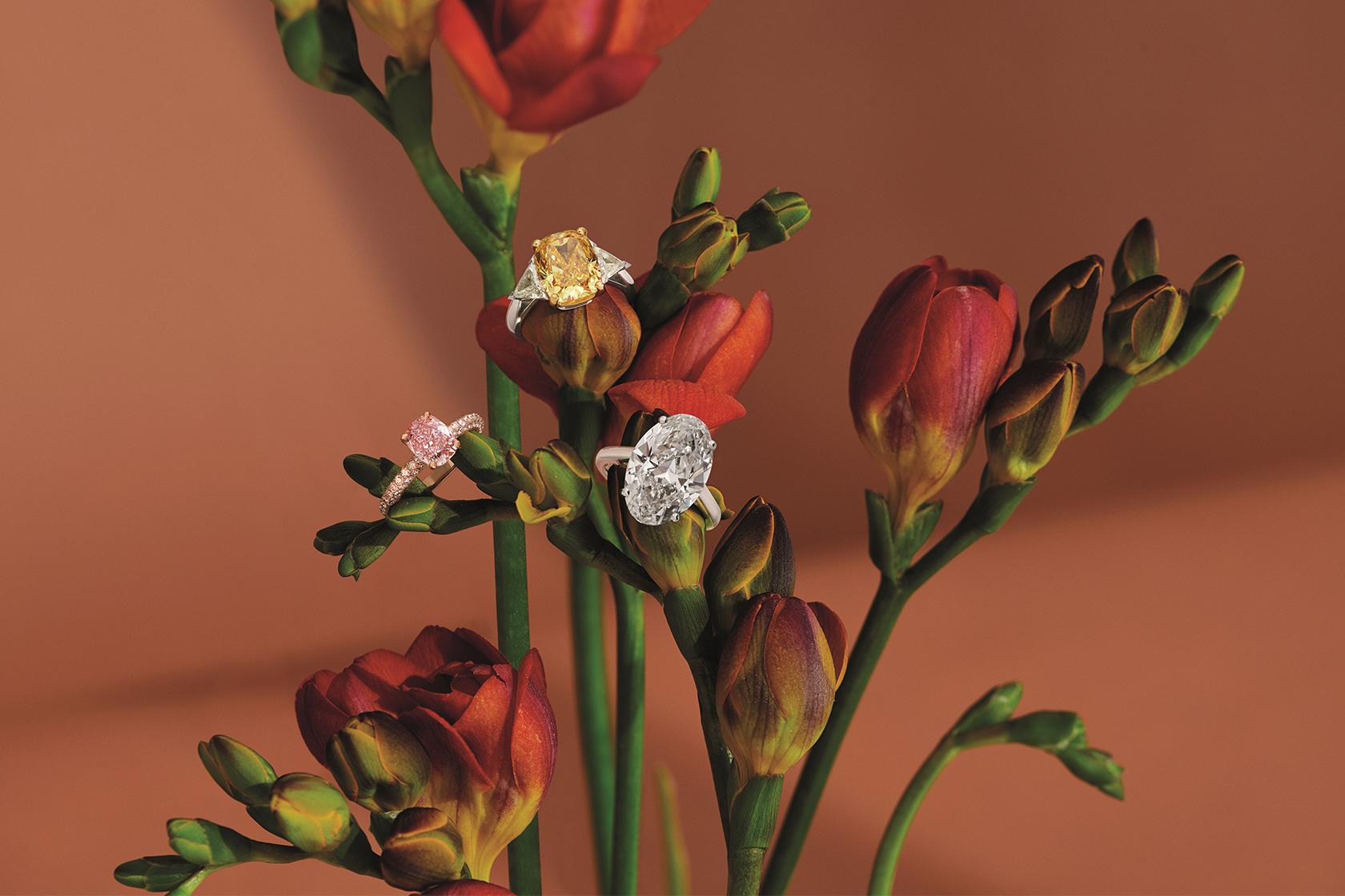 DE BEERS頂級珠寶展NATURE'S WONDERS頌讚幻美自然奇蹟