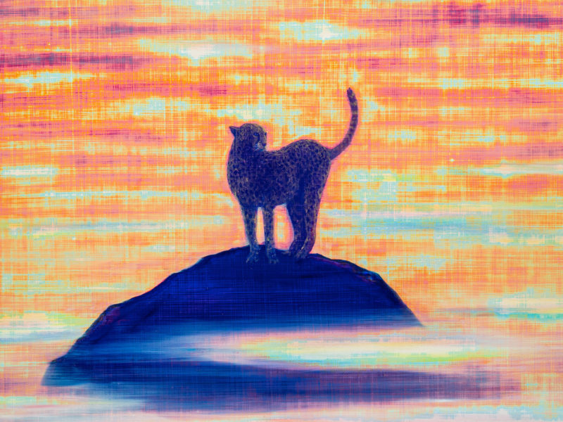 奇加加拉的凝視,光的精神|淺談林煌彥的藝術